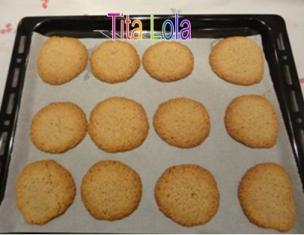 Galletas_de_avena_coco_y_chocolate2